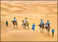 Thar Desert Jaisalmer Tours & Travels
